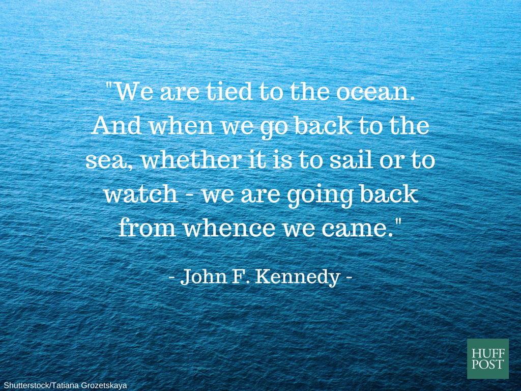 Quote About The Sea: 11 Quotes About The Ocean That Remind Us To Protect It