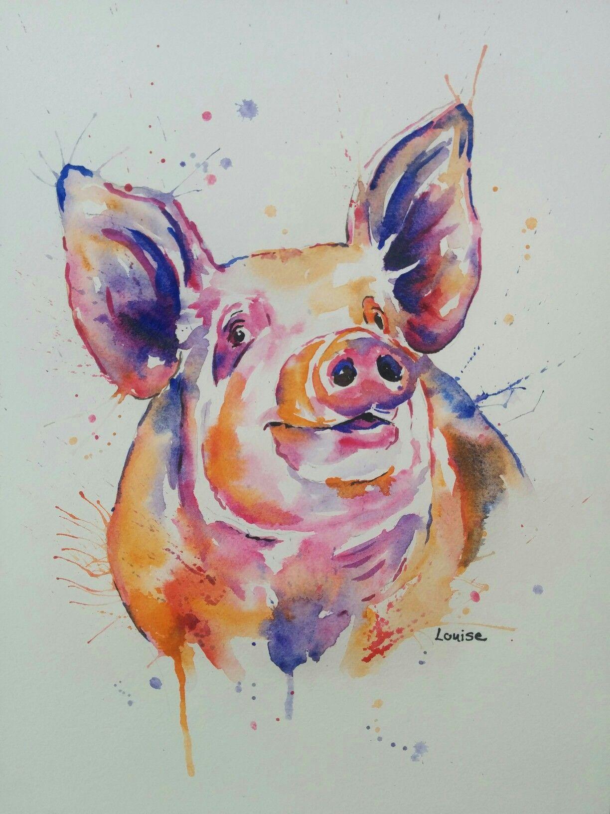 ziggy piggy watercolour animal illustrations pinterest