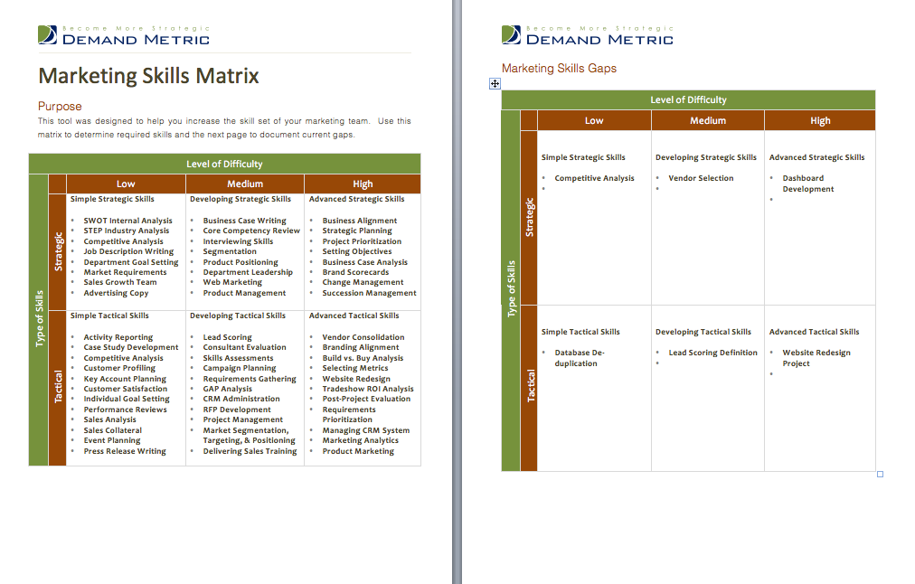 Marketing Skills Matrix  A Matrix Designed To Help You Increase