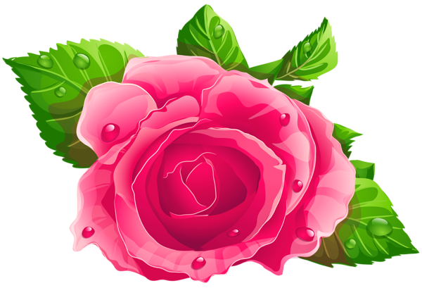 Pink Rose Png Clipart Flowers Pink Rose Png Flower Art Painting
