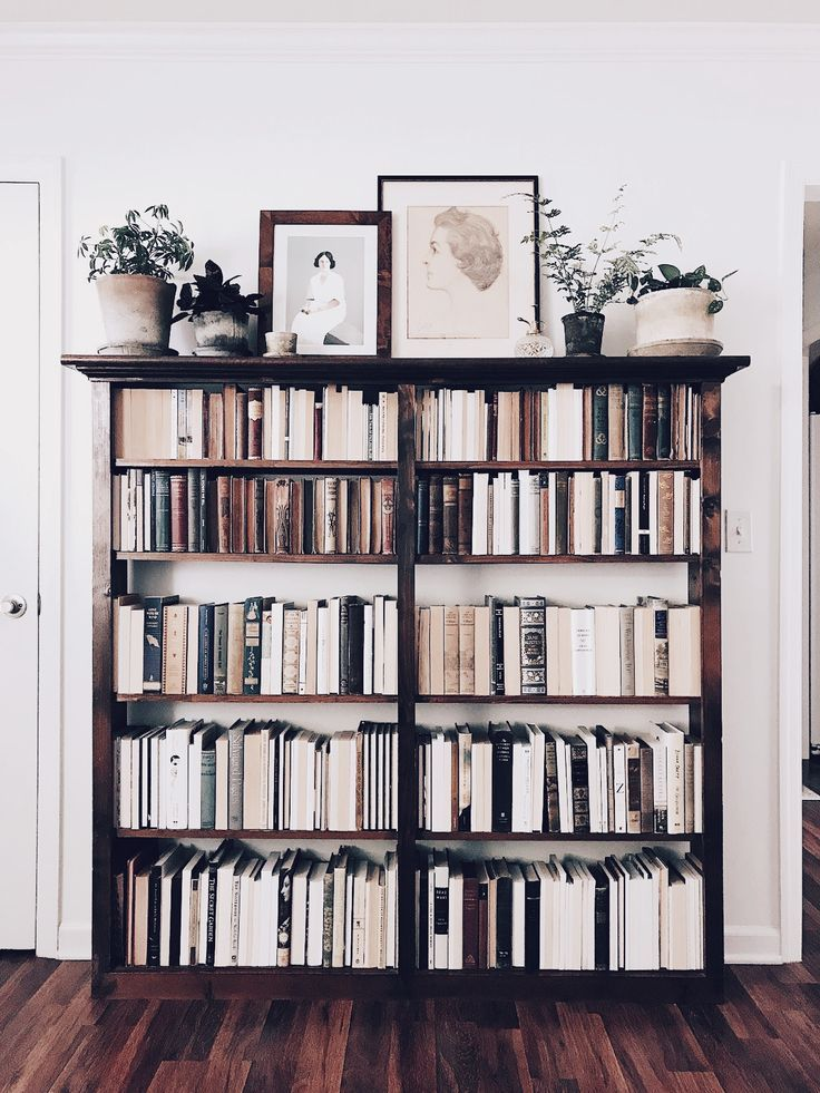 Bookshelves Design Ideas For Your Living Room