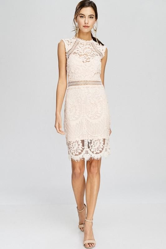 Verdant floral lace traces its way up a gorgeous dress topped with this  season s mock turtleneck edged in pretty scallops. - Hidden back zipper  with ... 459f9e2a3