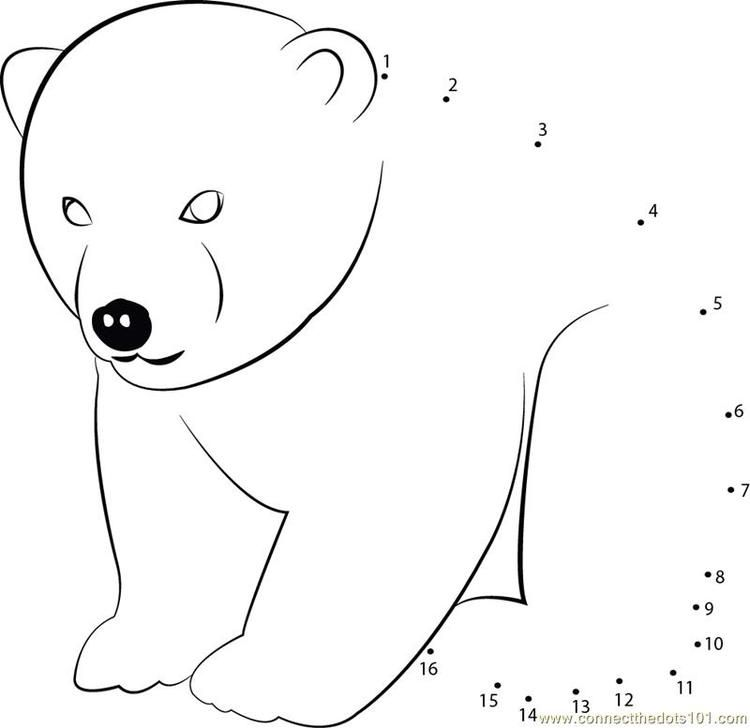 Angry Bear Connect Dots Angry Bear Coloring Pages Printable Coloring Pages