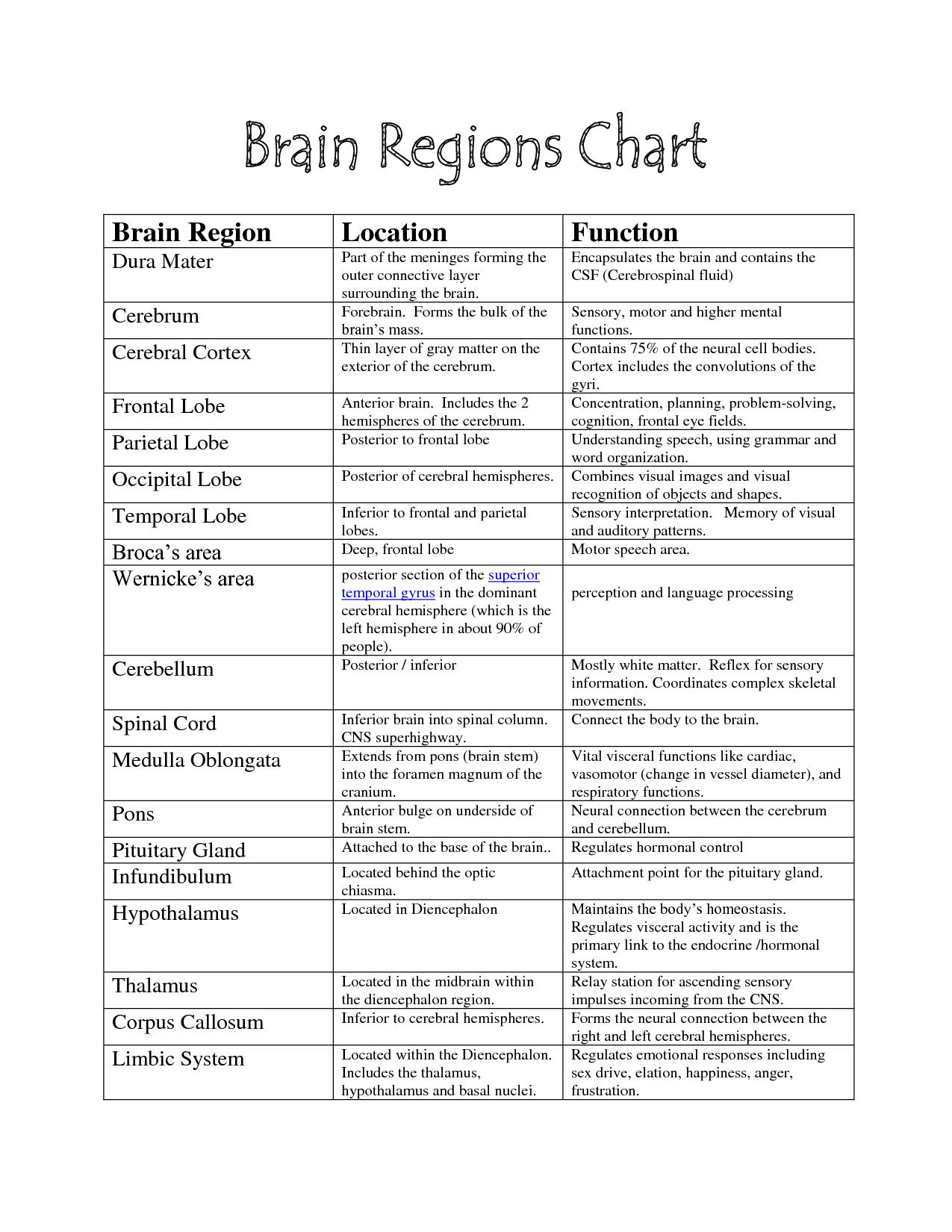 Brain Functions Chart Brain Parts