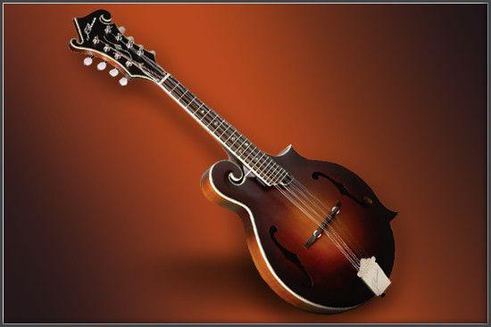 mandolin.