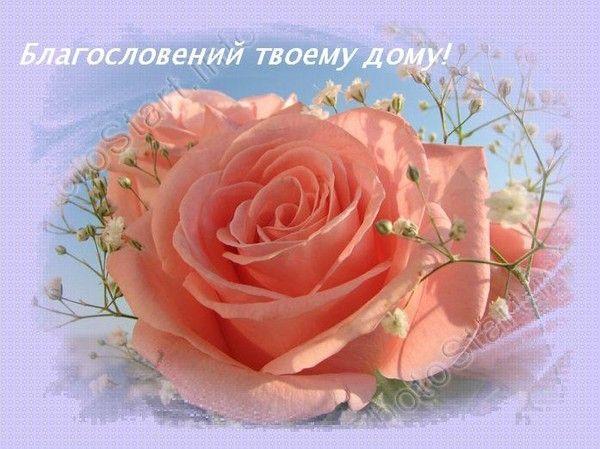Христианские открытки с днем рождения женщине цветы, считаю дни