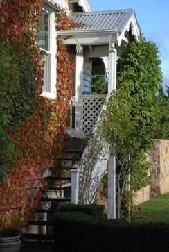 .Boston Ivy - cover metal shed
