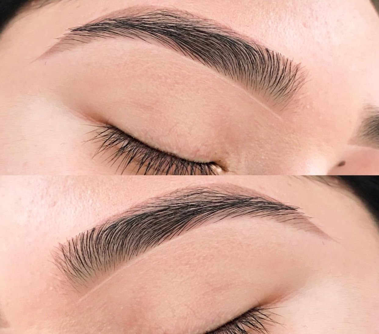 Natural Brows Full Eye Brows Arched Eyebrows Brows Eyebrows