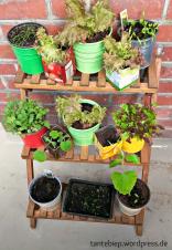 Gefäße muss man nicht kaufen, leere Verpackungen eignen sich hervorragend für Pflanzen