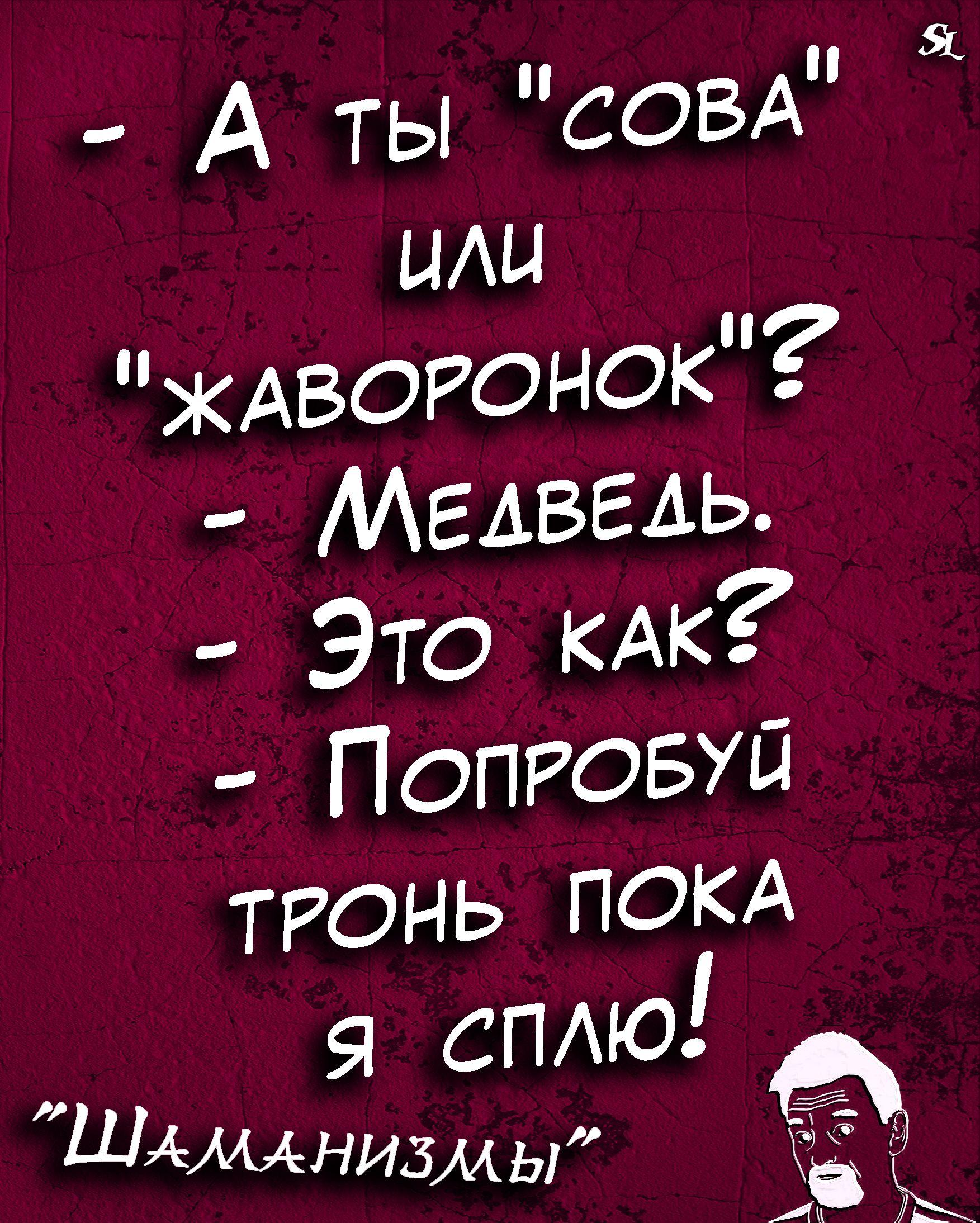 Shamanizmy Shutki Prikol Yumor Jokes Funny Humor Memes Shaman Ledentsov Sl Shaman Ledentsov Humor Jokes Phrase Of The Day