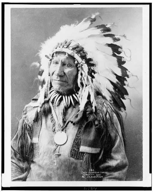 Chief American Horse Sioux Indian
