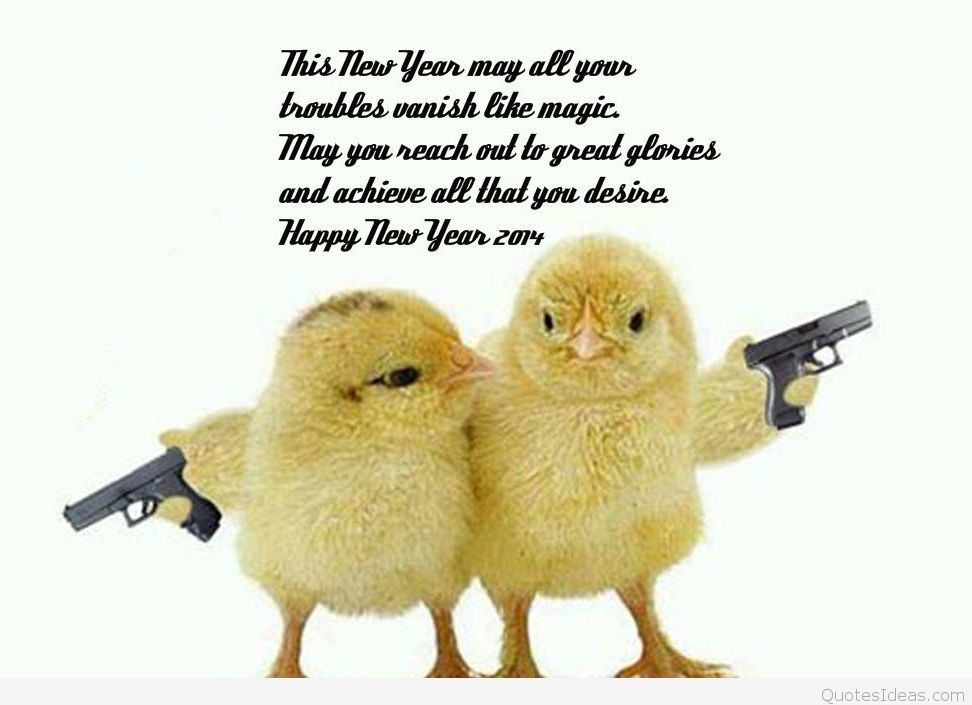Pin by beatrice rogers on New Years Day Baby chickens