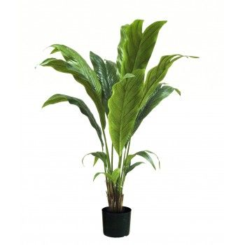 plante exotique artificielle