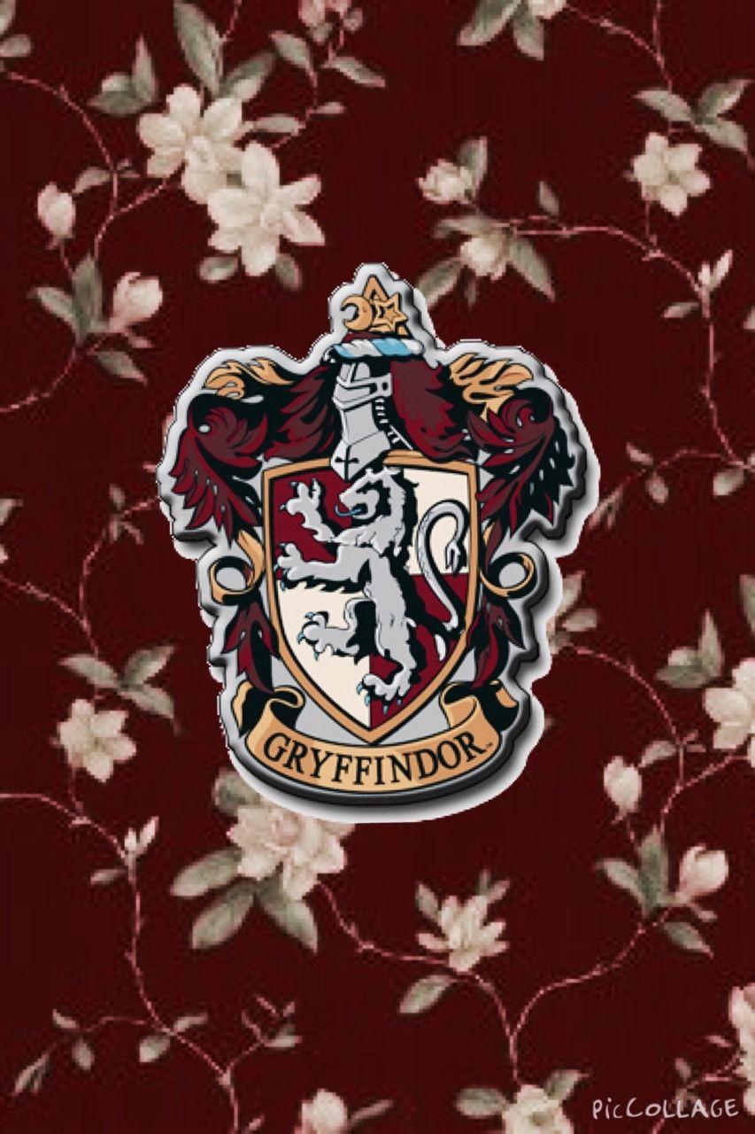 Harry Potter Fan Art: Gryffindor