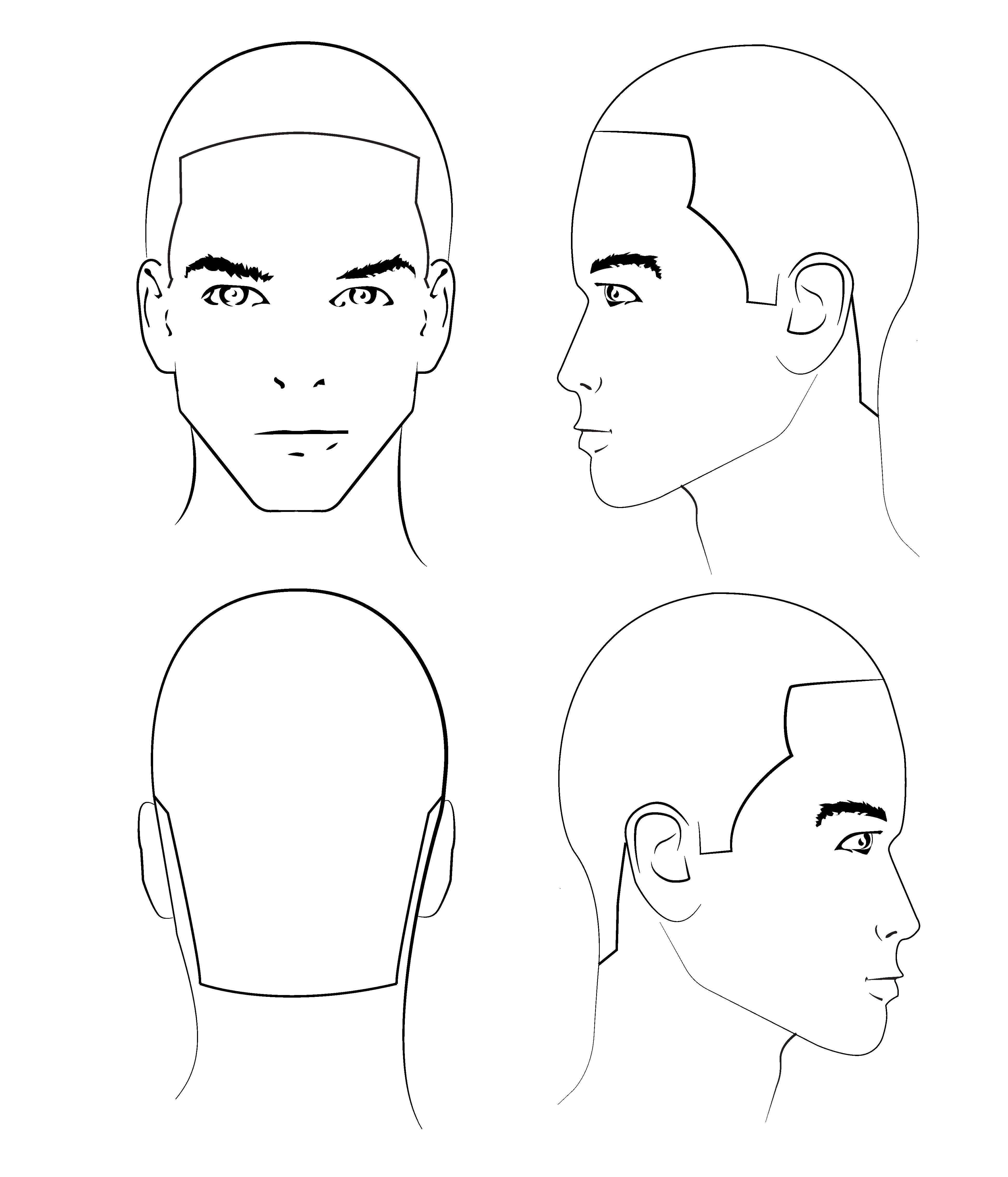 Use A Head Form Sheet This Is A Crucial Educational