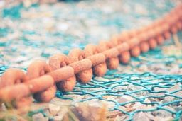 You can download this photo from https://www.shutterstock.com/image-photo/old-rusty-boat-chain-on-blue-564463693?src=zcI4y_rB5fA61M0gz03BjQ-1-1 http://www.istockphoto.com/ru/%D1%84%D0%BE%D1%82%D0%BE/old-rusty-boat-chain-gm655762076-119305441 https://fotolia.com/id/134090662