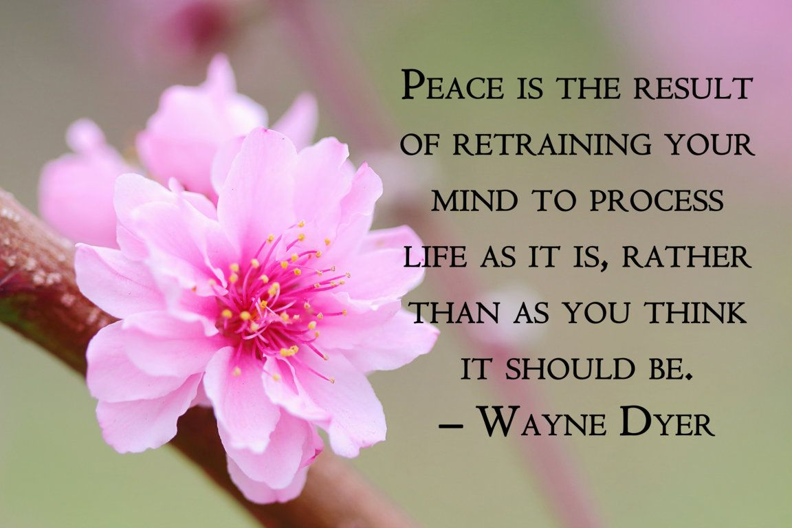 Peace is the result of retraining your mind to process life as it is, rather than as you think it should be. - Wayne Dyer