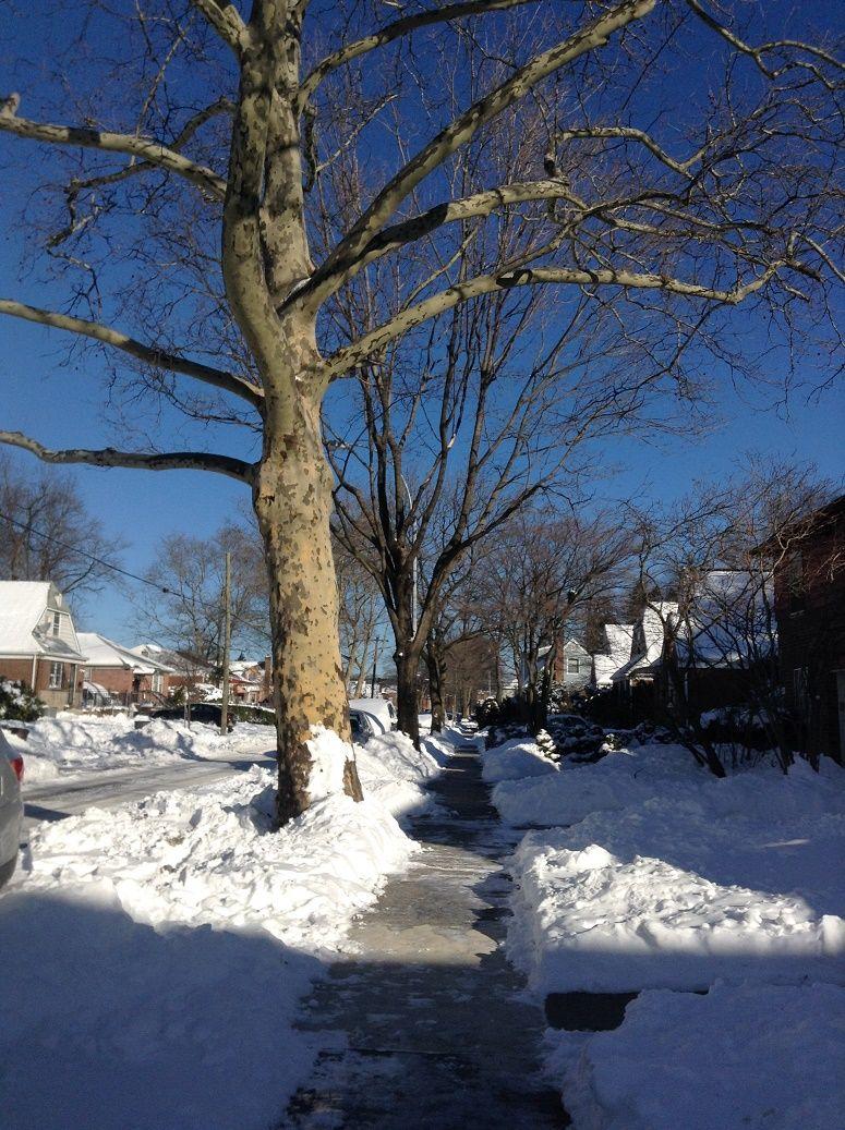 Queens neighborhood after the snow storm December 2014 / asi se ven las calles despues de las tormetas de nieve. Diciembre 2014