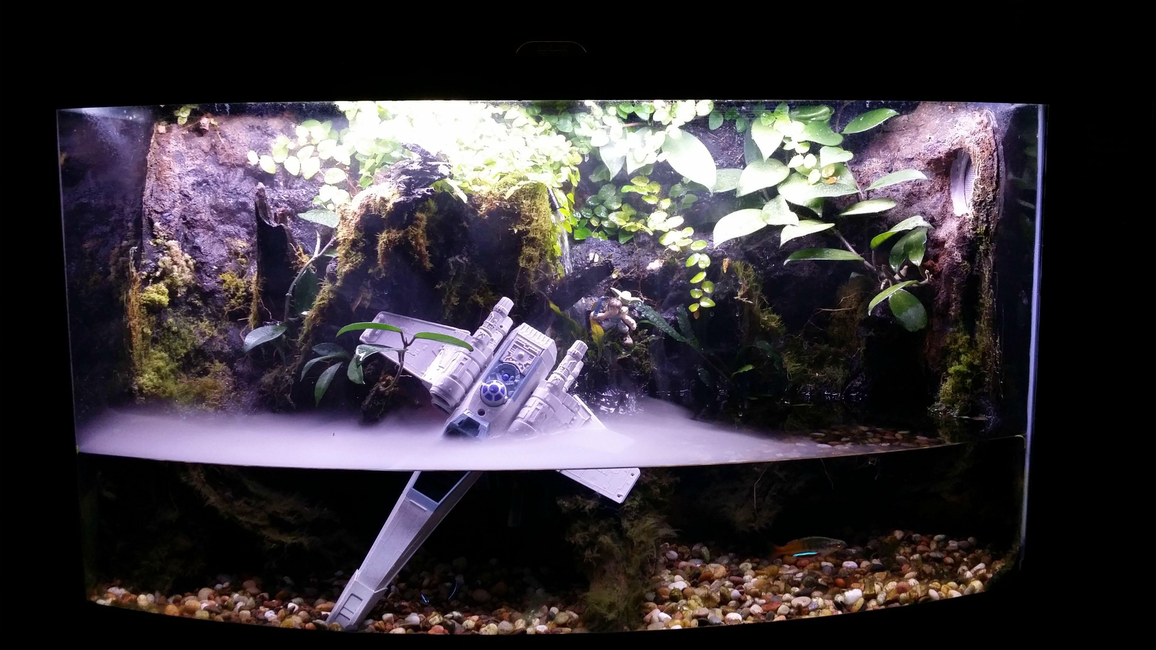 Xwing Terrarium Fish Tank Aquarium Terrarium