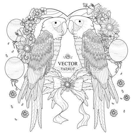 Página para colorear de loro hermoso — Vector de stock | M Pajaros ...