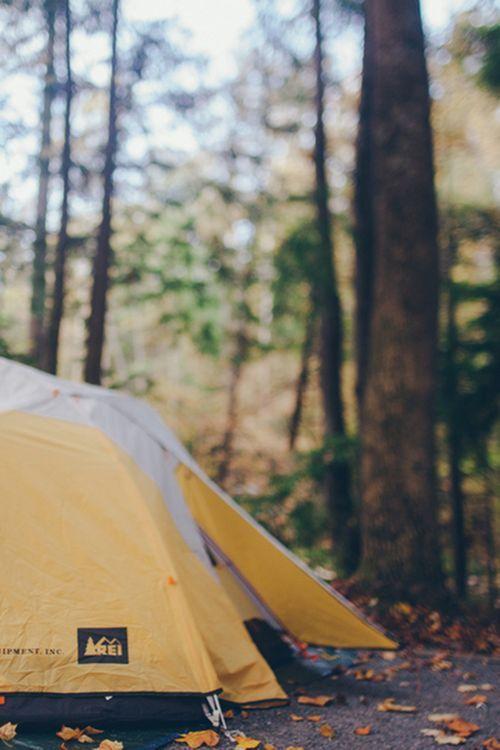 pir-ado x nature blog x The Best of... - survivallovers. Tent C&ingC&ing OutdoorsC&ing ... & pir-ado: x nature blog x The Best of... - survivallovers ...