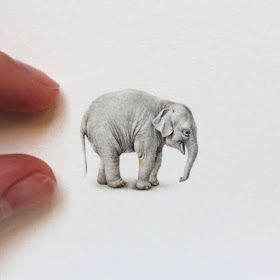 Tiny Animal Watercolor Paintings and Other Miniatures