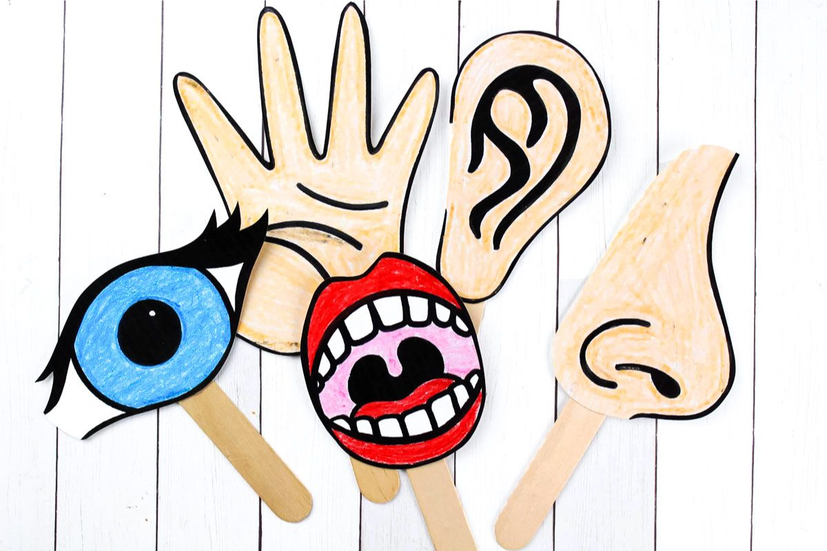 Download These Free Printable 5 Senses For Kids Puppets To