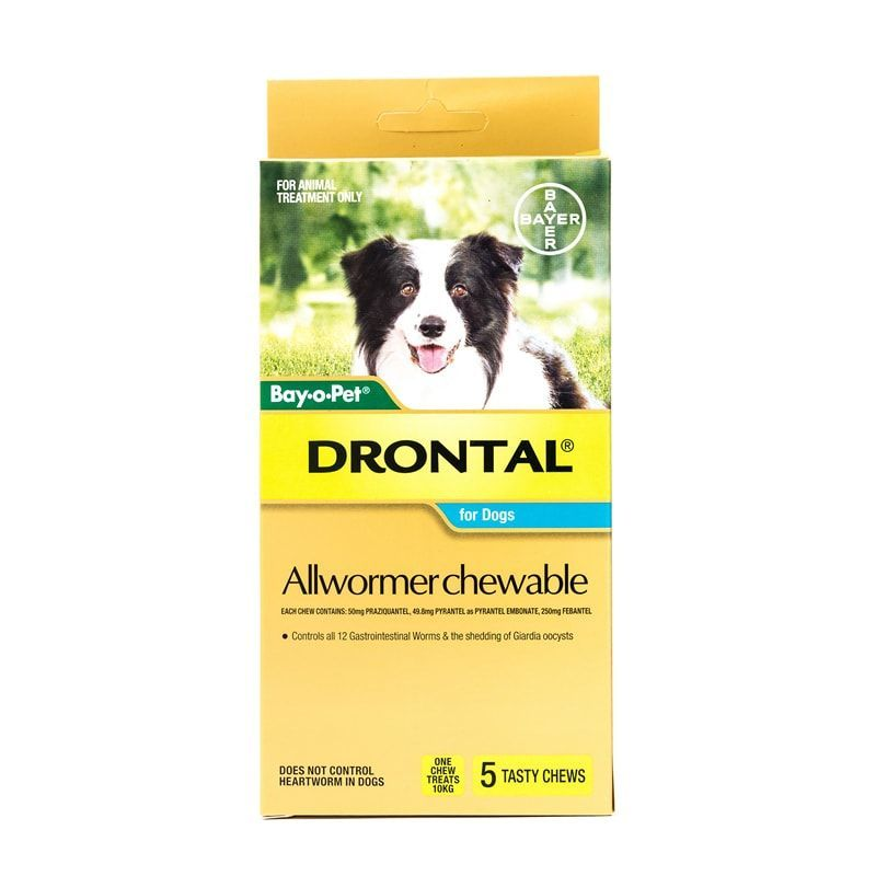 Drontal Allwormer Chewable For Dogs 10 Kg 22 Lbs Drontal Is Recommended For The Control Of All Gastrointestinal Worms Worms In Dogs Food Animals Healthy Pets
