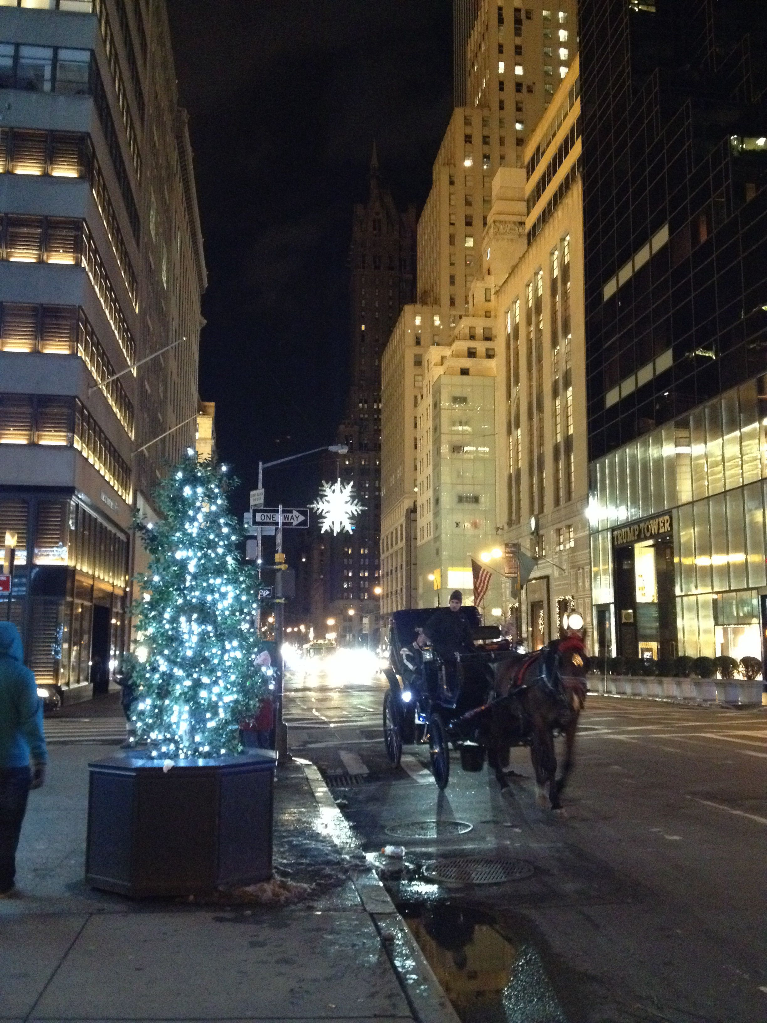 5th Ave NYC Christmas
