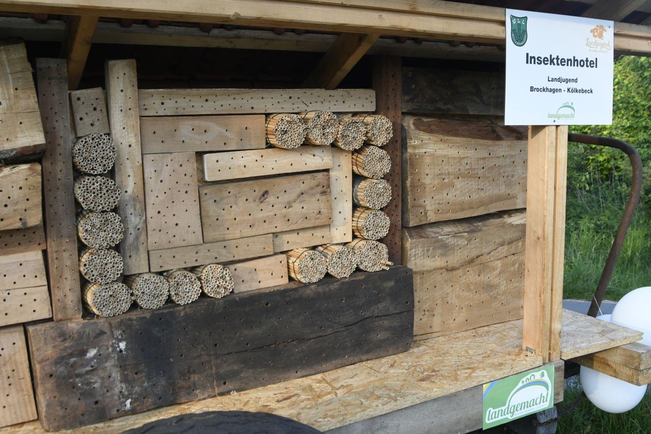 Insektenhotels Fur Wildbienen Bauen Insektenhotel Wildbienen Und Insekten