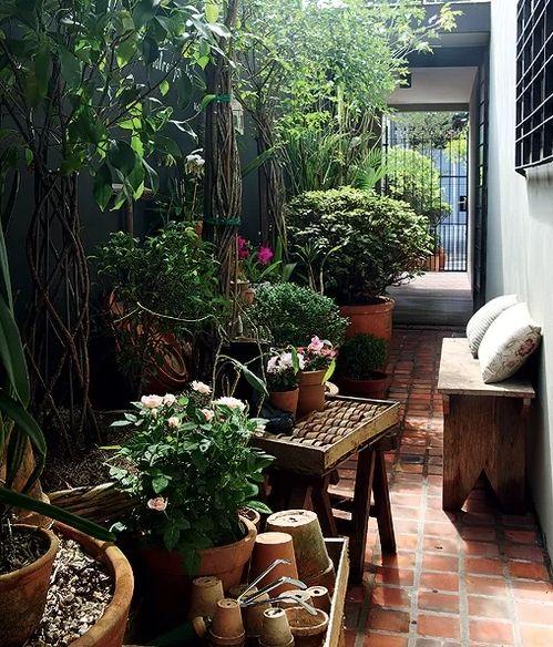By Claudia Muñoz | Small garden design, Terrace garden ...