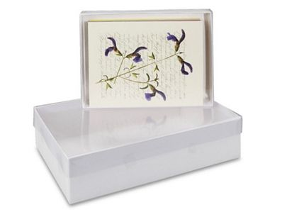 Clear lid boxes in stock uline cookie love pinterest box clear lid boxes in stock uline m4hsunfo