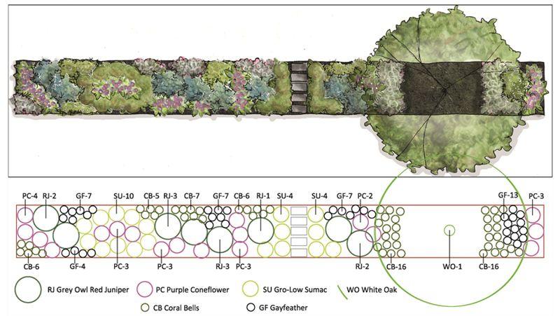 Urban Biodiversity In Your Yard Landscape Design Software Landscape Architecture Design Landscape Design