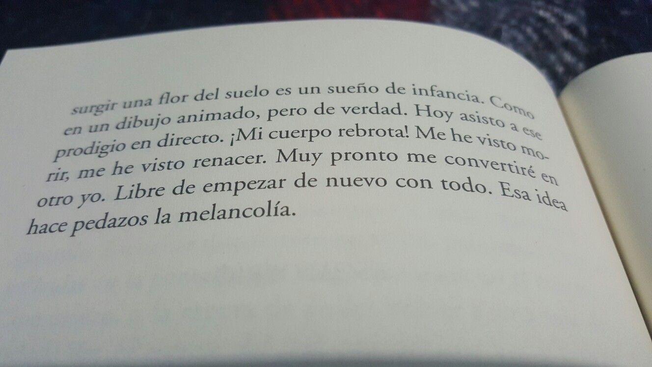 Diario De Un Vampiro En Pijama  Mathias Malzieu · Pajamasdailybooks