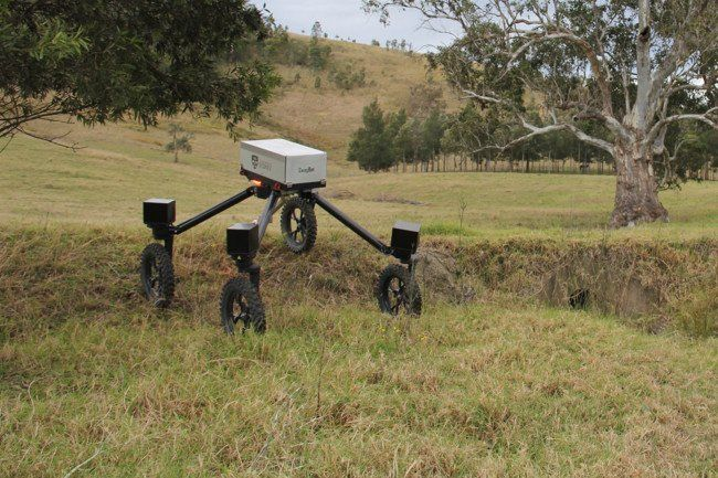 Los robots llegan a la granja para jubilar al perro pastor: SwagBot https://t.co/fgOWOapxLp #CPMX8 https://t.co/oiQC8VEtqt #CPMX8