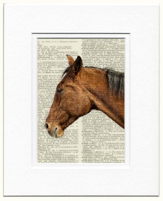 Brown Race Horse and Rider Jockey Art VINTAGE DICTIONARY BOOK PAGE PRINT