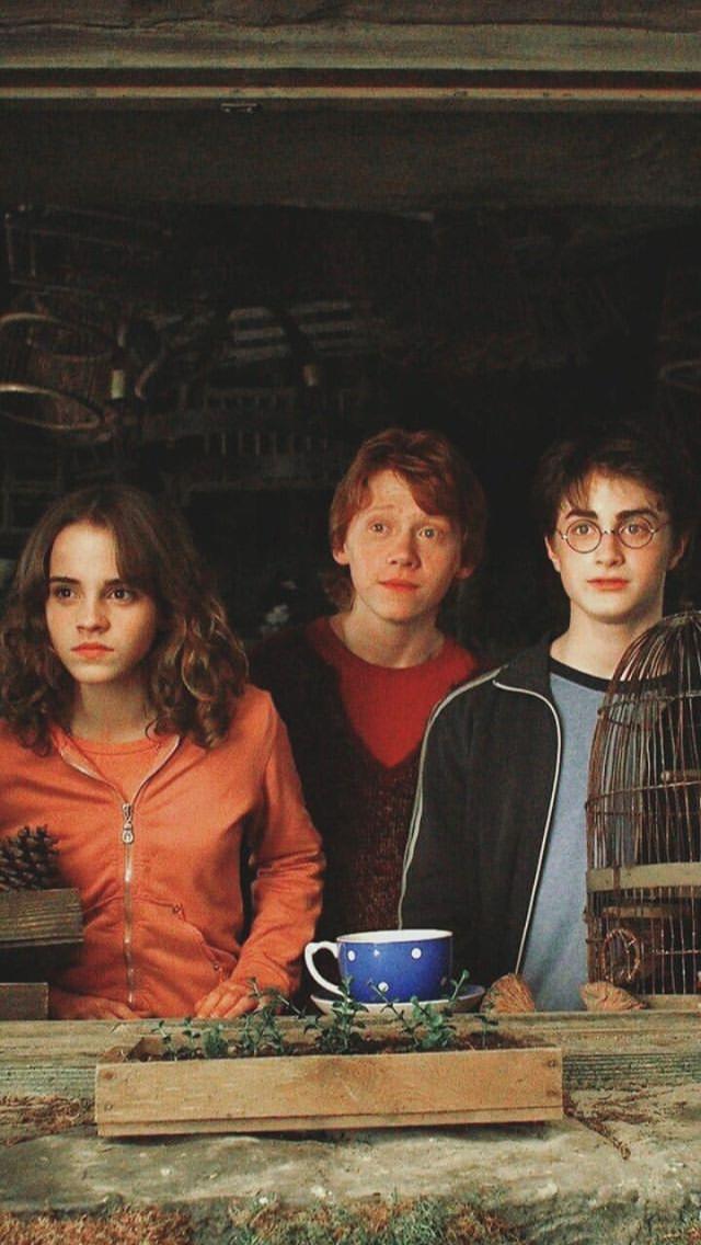 Hp Nao Sao De Minha Autoria Harry Potter Filme Atores De Harry Potter Cartaz Harry Potter