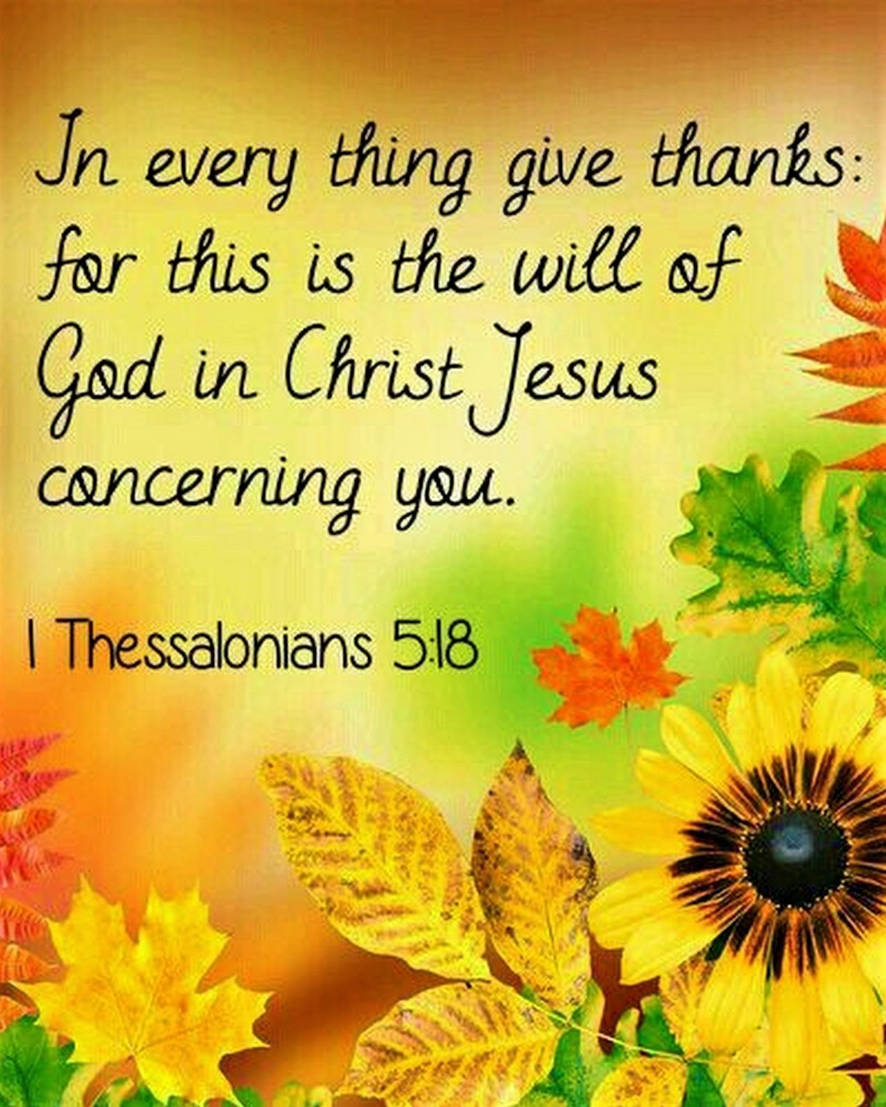 1 Thessalonians 5:18 (KJV) - In every thing give thanks: for this is the will of God in Christ Jesus concerning you… | Thessalonians,  Harvest bible, 1 thessalonians