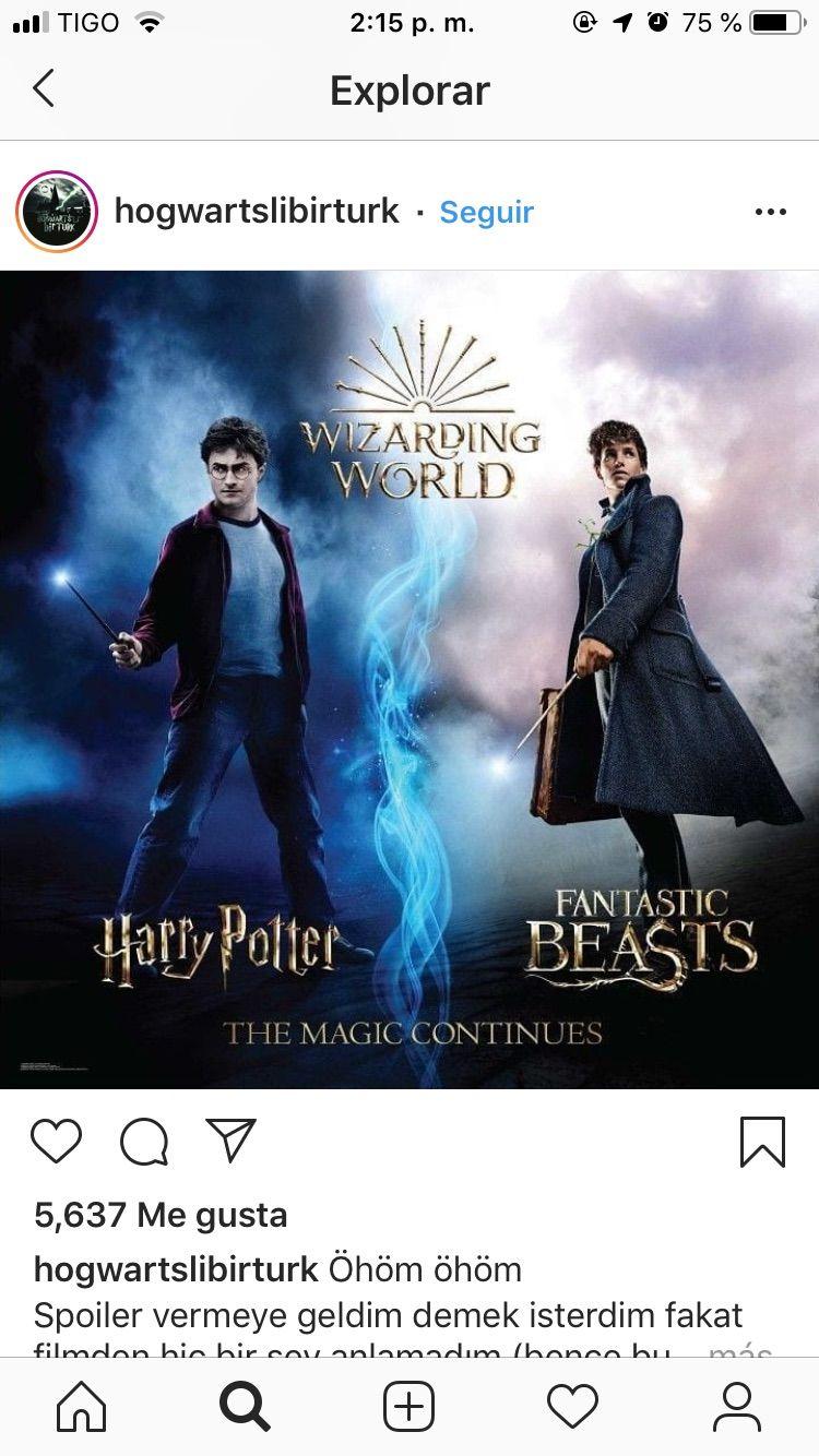 Pin Von Felmi Auf Harry Potter Fantastic Beasts Fantastische Tierwesen Tierwesen Und Tiere