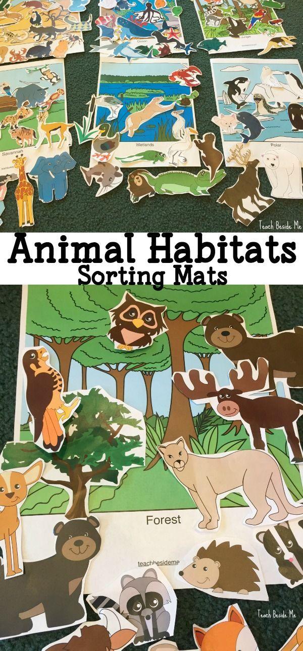 aquarium trip animal habitats sorting mats animals activities for kids kindergarten. Black Bedroom Furniture Sets. Home Design Ideas