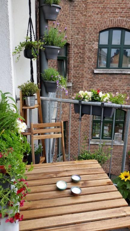 Schöner Balkon zum Innenhof mit vielen grünen Pflanzen und Blumen - schone balkon und terrasse gestaltung akzente