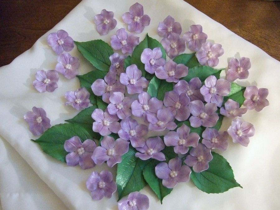 I can't believe the number of people that Love Hydrangeas
