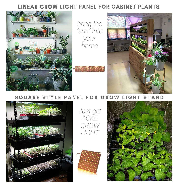 Acke Led Grow Light For Indoor Plants Plant Light For Grow Light
