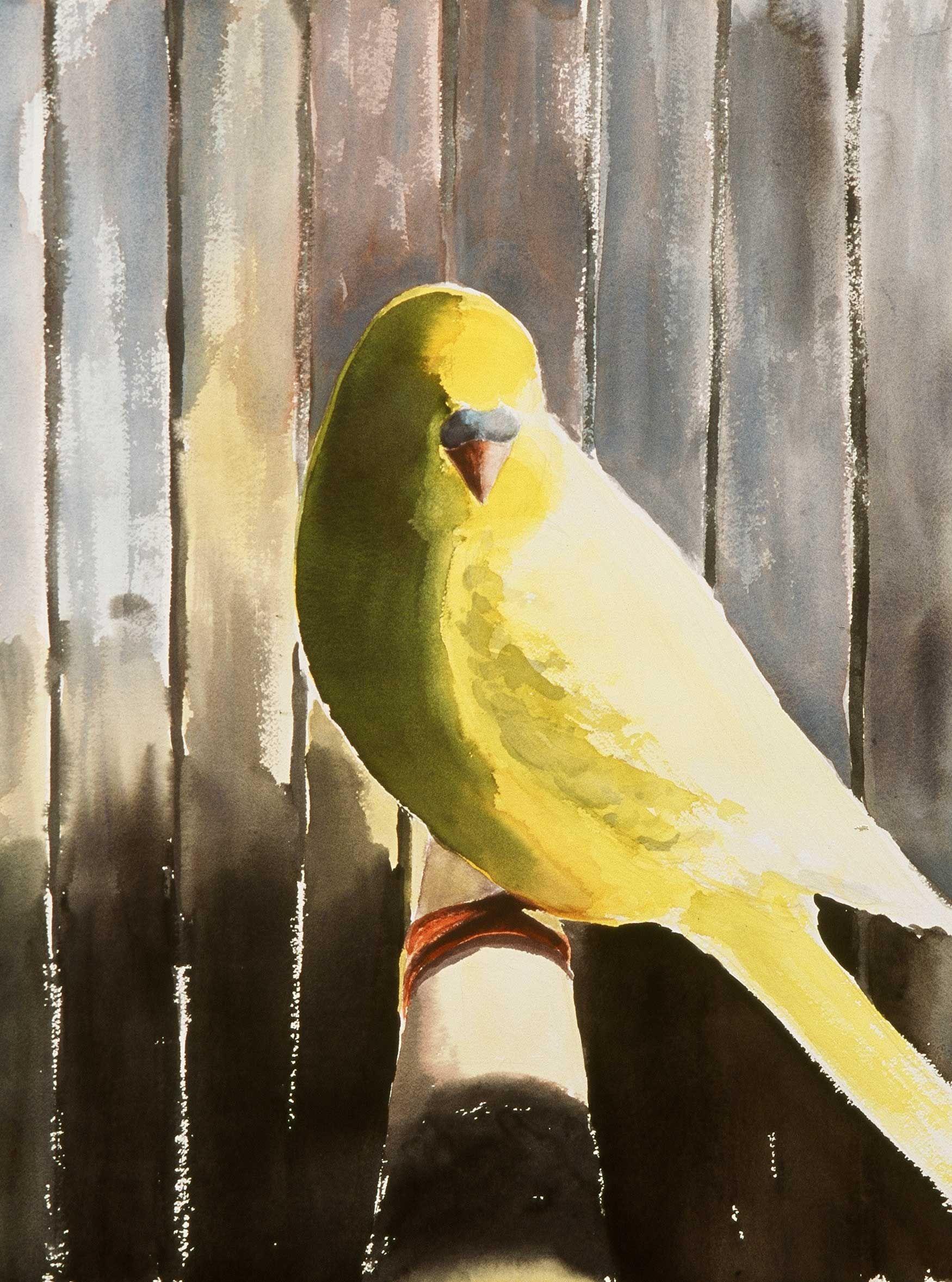 yellow bird watercolor... tamara krendel