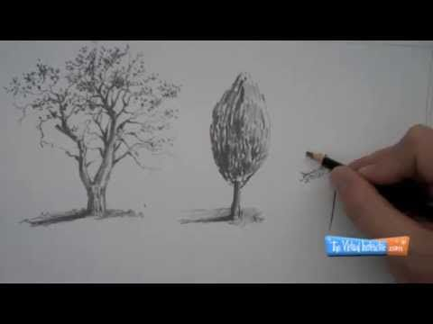 Cómo dibujar árboles, sketchs.