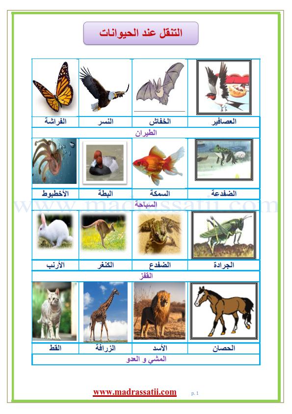 معلقات التنقل عند الحيوانات السباحة و المقفز و الطيران و المشي و العدو موقع مدرستي