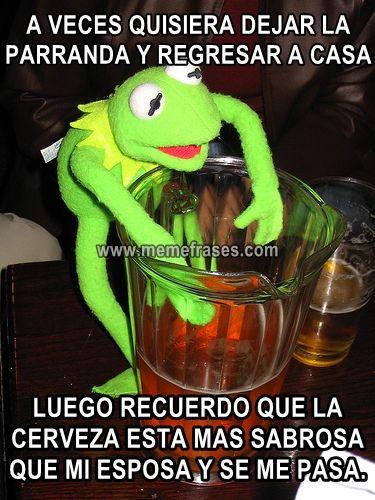 La Rana Rene Borracho Y Parrandero Imagenes Para Grupo Whatsapp Risas Y Mas Risas Memes Divertidos