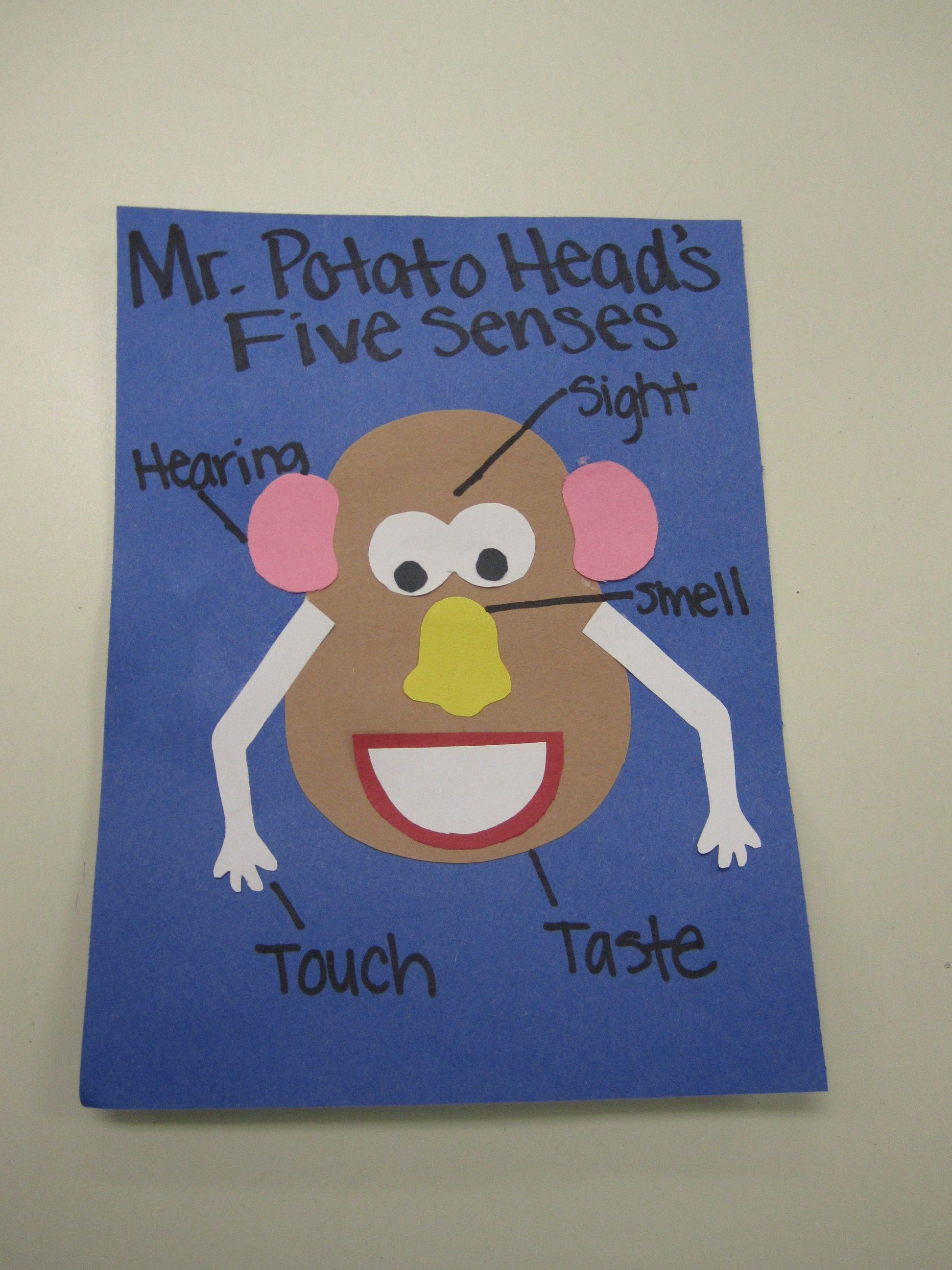 Potato Head 5 Senses