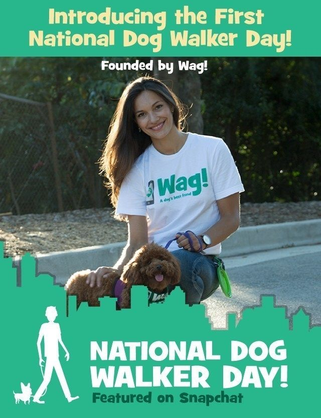 Wag Announces National Dog Walker Appreciation Day To Celebrate