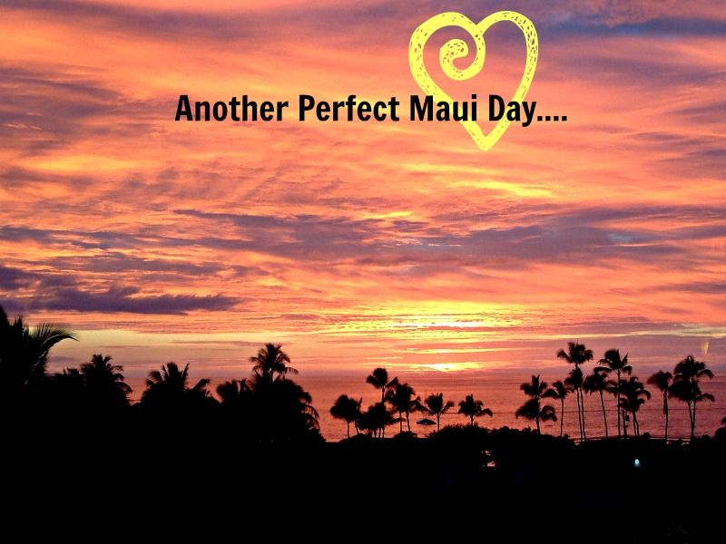 This was last nights sunset! 12/8/13 -- Perfection. Maui, Hawaii.   (We love Elvis! http://www.burnnlove.com/  )
